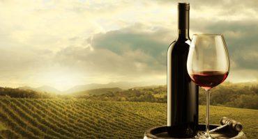 Porto entre os 10 melhores destinos vinícolas de Europa