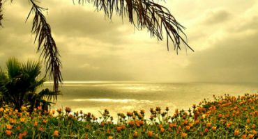 Ilha da Madeira recomendada para lua-de-mel