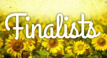 Vota nas 20 fotos finalistas de #myspringram!