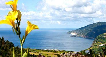 Voos TAP para Açores: grátis para crianças até 31 de Julho