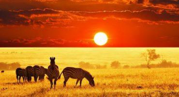As melhores imagens do pôr-do-sol