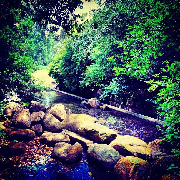 giardini Gulbenkian visitare lisbona edreams blog di viaggi