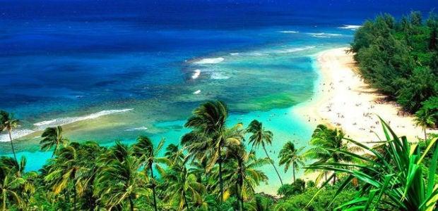 Navidad Hawaii