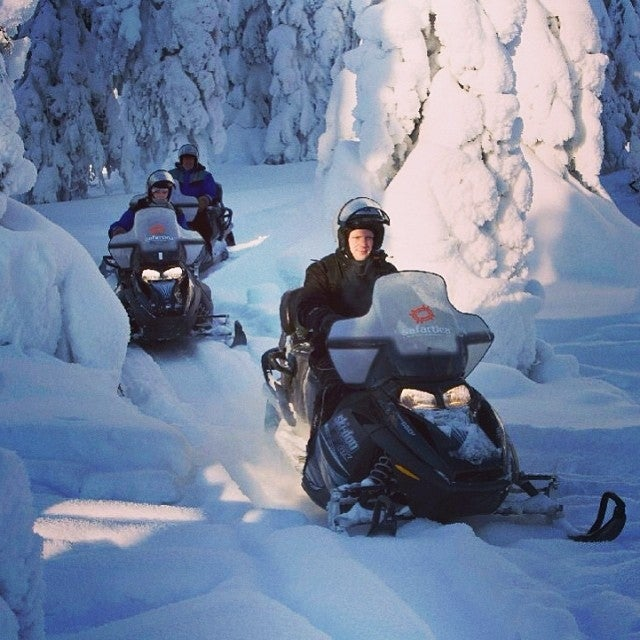 Floresta boreal en un safari en moto de nieve en Laponia