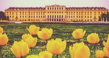 Viagem a Viena: 25 atividades imprescindíveis e lugares a visitar