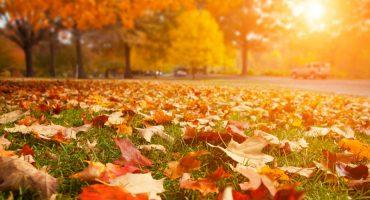10 lugares onde sempre deveria ser Outono