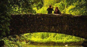 Viagem a Dublin: 25 atividades imperdíveis e lugares a visitar