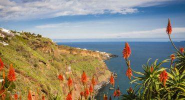 25 atividades e lugares a visitar durante uma viagem à Madeira