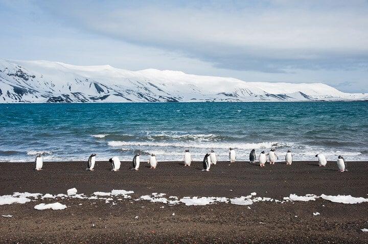 Ilha Deception, Antártida