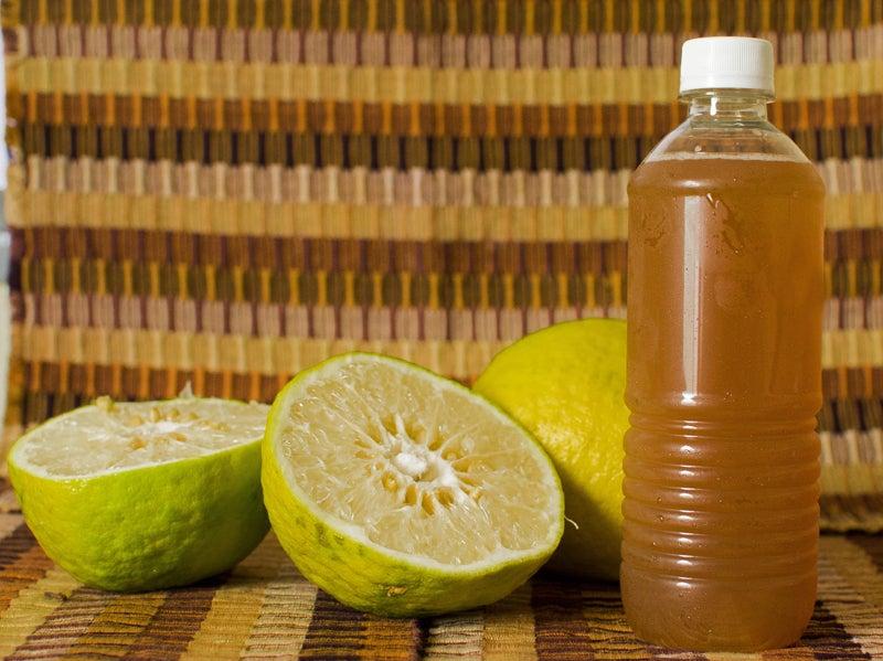 Chinchivir bebida típica guatemala