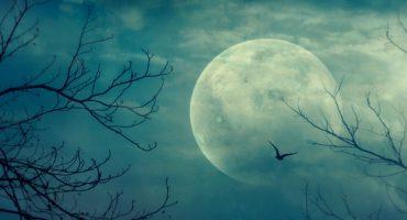 5 destinos assustadores para celebrar este Halloween
