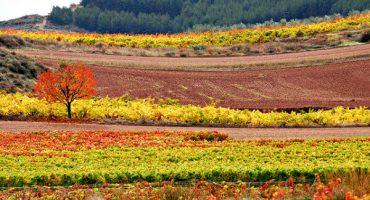 Lugares de Espanha para viajar em Outono