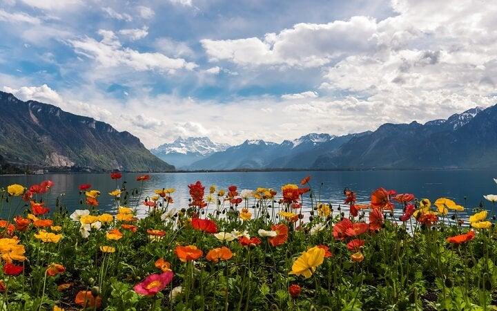 Les Avants – Lago Léman - Primavera