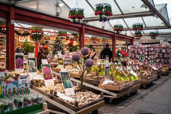 bloemenmarkt - mercado de flores em amesterdão - holanda