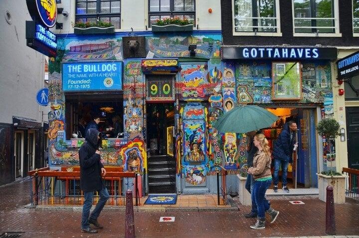 coffee shop bulldog em amesterdão - holanda